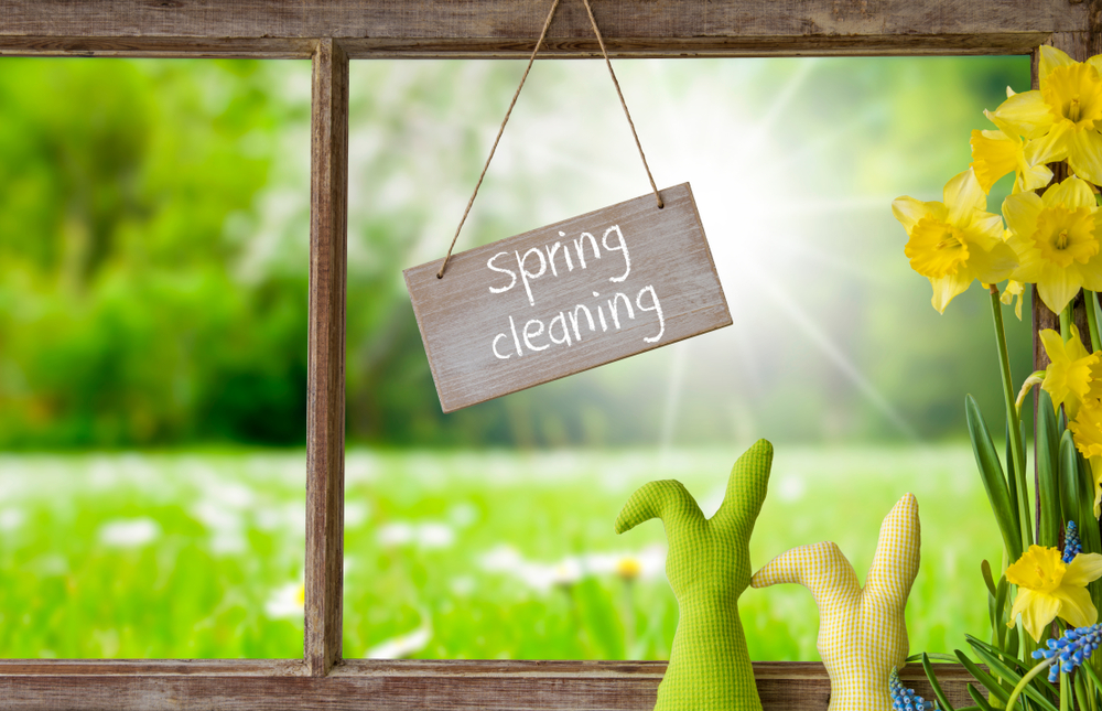 Window, Green Meadow, Spring Cleaning